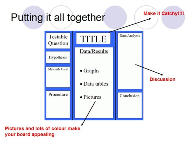 Playedconvincescf How To Write A Discussion For A Science Fair - Layout of a science fair board